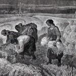 Воробьева И.Н. (1933-1993). Трудная жатва. 1989. Гравюра на картоне