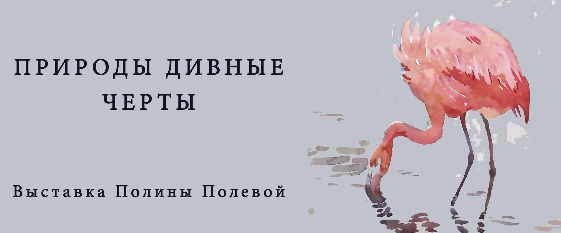 Выставка Полины Полевой«Природы дивные черты…»